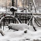 Urząd Miasta odśnieży ścieżki rowerowe
